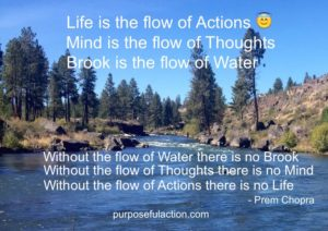 Prem Chopra Purposeful Action flow-life-flow-of-action-pcpa