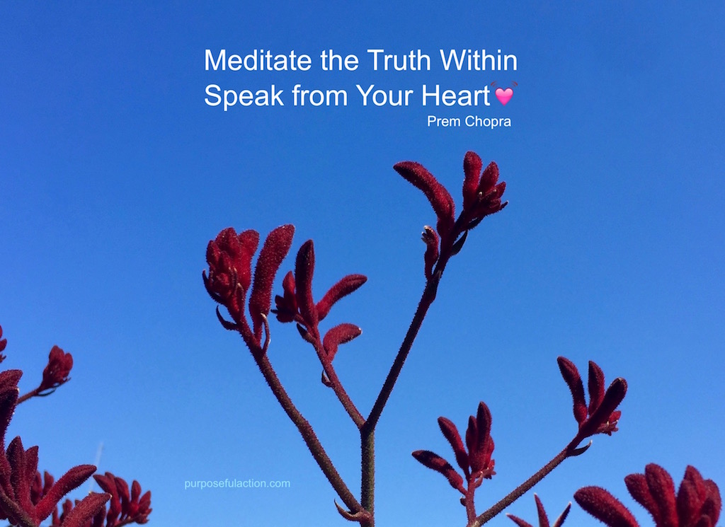 Mediate the Truth Within